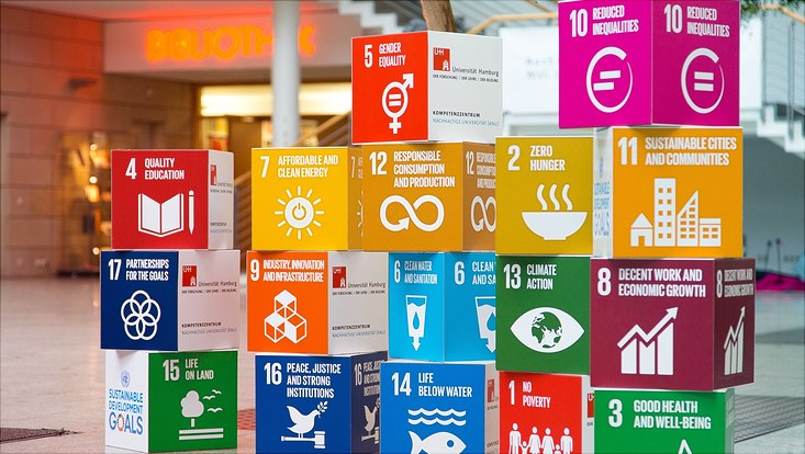 Würfel mit den sustainable development goals beschriftet.