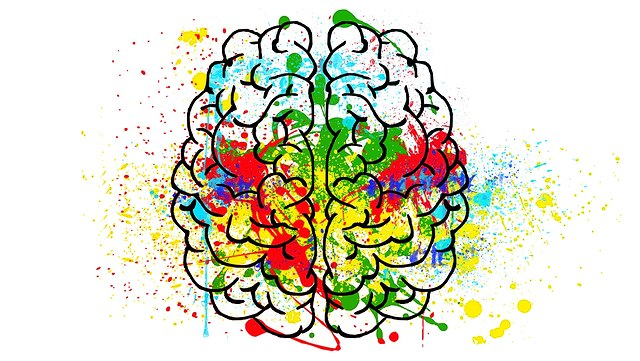 Draufsicht eines modellhaften Gehirns mit bunten Farbspritzern