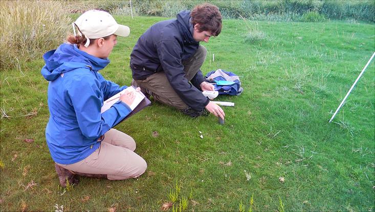 Dr. Peter Müller und Dr. Stefanie Nolte haben mit ihrem Team weltweit mehr als tausend Teebeutel vergraben, um die Speicherkapazität von CO2 im Boden zu bestimmen.