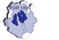 Logo FOR1805