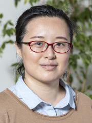 Profilbild von Xiangyun Kong