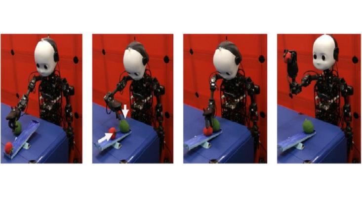 neuralmicrocircuitsprobsolving