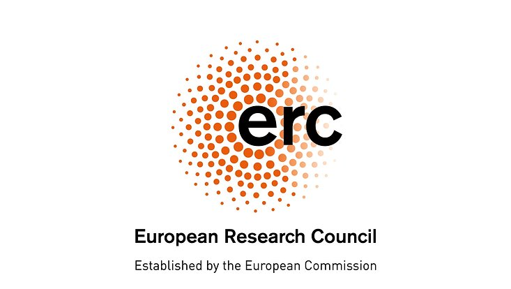 Logo des European Research Councils.