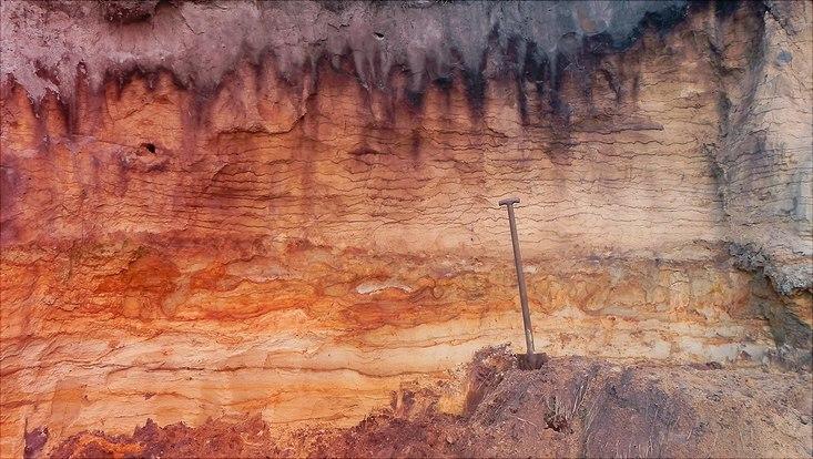 Ein Spaten steckt vor einem Erdvorsprung an dem unterschiedliche Erdschichten zu erkennen sind.