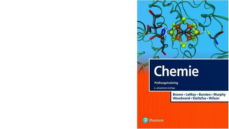 Cover des E-Books Prüfungstraining / Brown