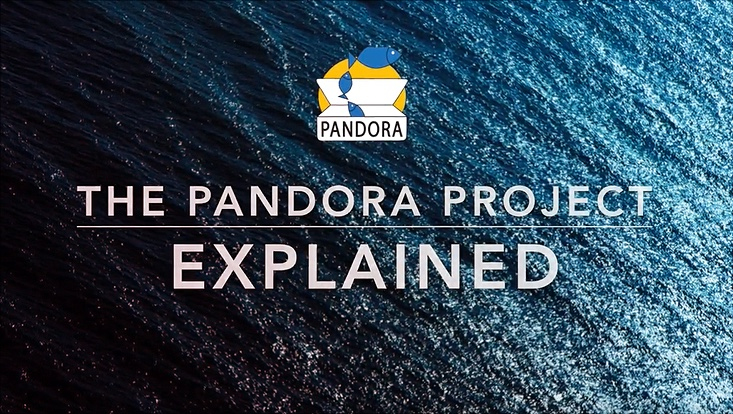Watch this video to see what PANDORA is all about!