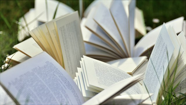 mehrere aufgeschlagene Bücher