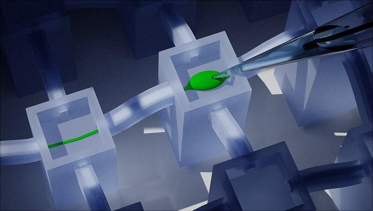 Schemabild einer neuronalen Zelle und Axon durch den Kanal zum Nachbarturm, die mit Patch-Clamp-Technik zur Messung der Aktivität des Neurons kontaktiert wird.