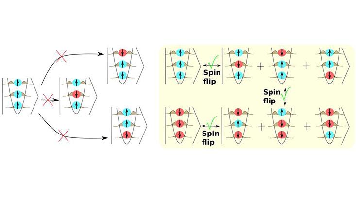 Illustration der Spin-Austausch-Dynamik