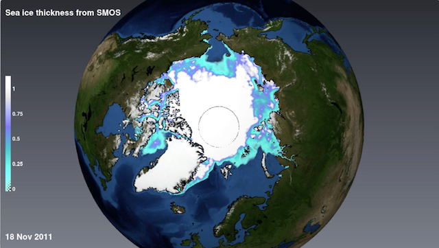 Sea Ice Variability