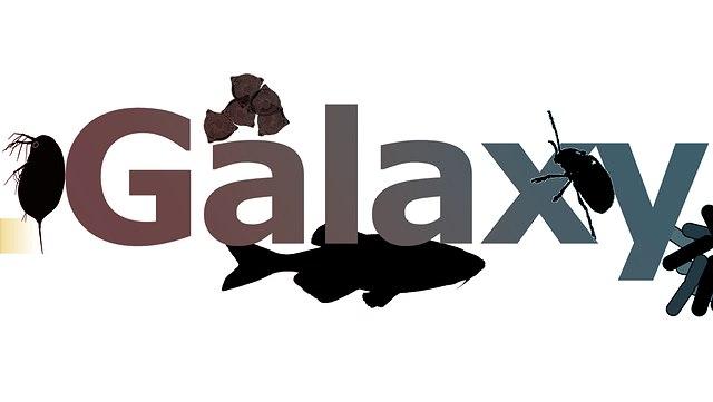 Schriftzug Galaxy mit Symbolen der Biologie