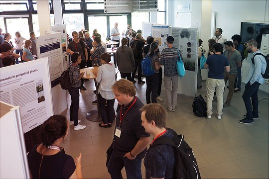 Poster session from above