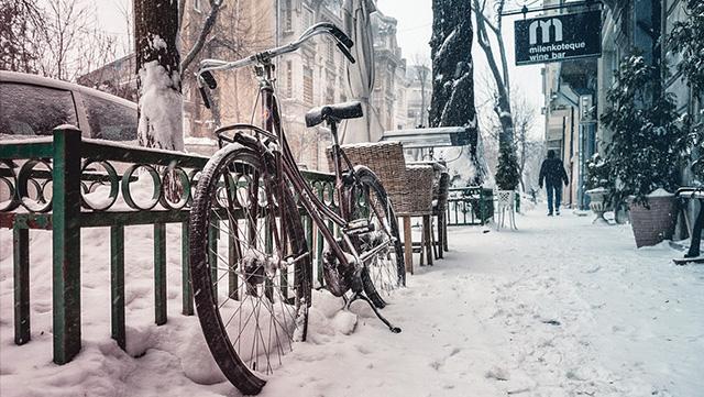 seasonal-pred