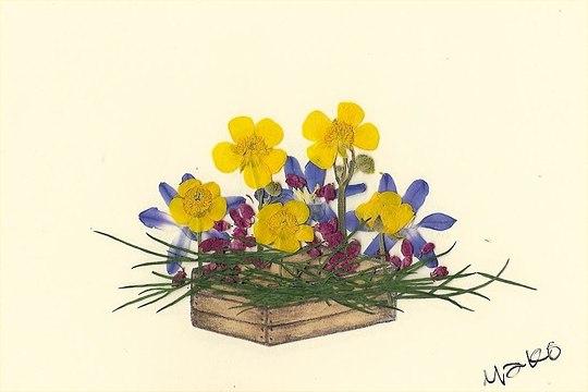 Kiste mit Blumen