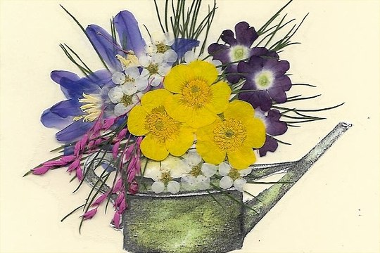 Kanne mit Blumen
