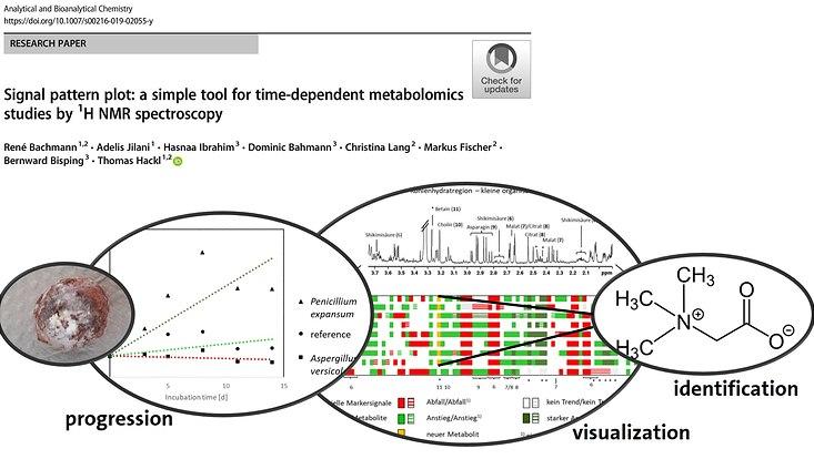 Titelbild für Signal Pattern Plot ein Research Paper aus Analytical and Bioanalytical Chemistry