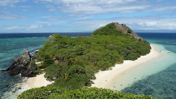 Eine Insel im blauen Meer. Die Insel ist voller grüner Bäume. Drumherum ein heller Sandstrand.