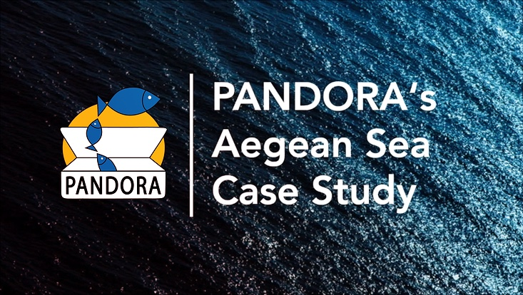 PANDORA Aegean Sea Case Study Mediterranean Fisheries Management HCMR Hake