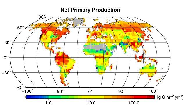 NPP global