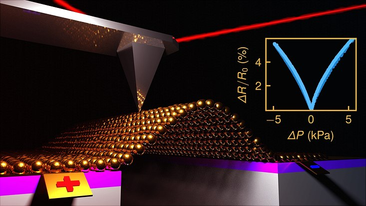 Zur Charakterisierung der hergestellten Drucksensoren werden Gold-Nanopartikelmembranen durch eine Druckdifferenz verformt. Die dadurch verursachte Membrandehnung wird mit dem Rasterkraftmikroskop bestimmt während gleichzeitig die hochempfindliche Än