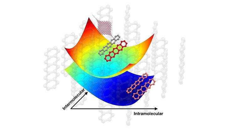 Quantenvibrationskohärenzen treiben die ultraschnelle Singulettexzitonenspaltung voran.