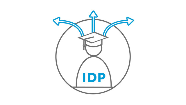 Icon Individual Development Plan