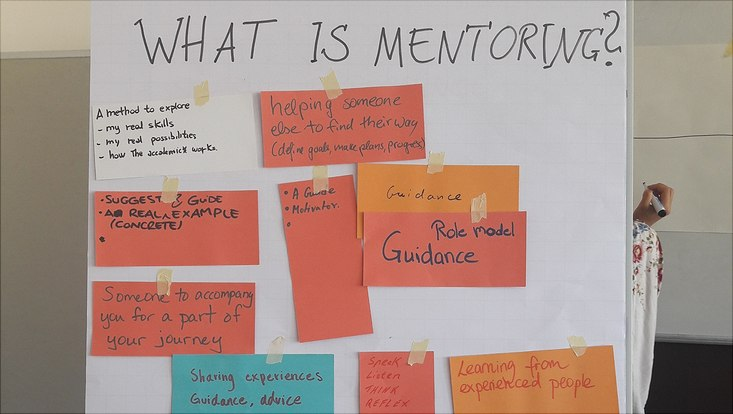 Flip chart with statements about mentoring