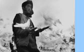Mann mit Gewehr inmitten von weißen Tauben