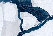 Der Wind hat ein Eisfeld auseinander getrieben und eine Fläche offenen Wassers geschaffen. Dessen Oberfläche gefriert sofort wieder, wie die weißen Schlieren verraten. Sie entstehen, wenn der Wind lose Eiskristalle verweht.