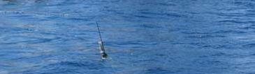 Argo boje an der Oberflaeche im Meer treibend