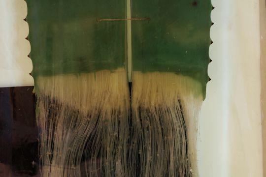 Blattabschnitt einer Agave