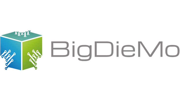 Logo BigDieMo