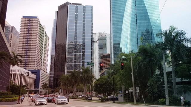 Straße mit grünen Bäumen und Glashochhäusern in Miami