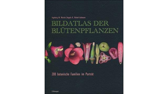 """Abbildung des Buchs """"Bildatlas der Blütenpflanzen"""""""