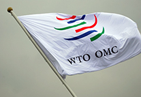 The WTO has 161 member states, China is one of them since 2001