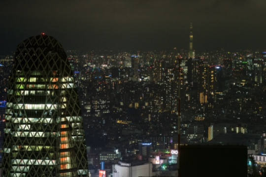Blick aus dem Metropolitan Goverment Building