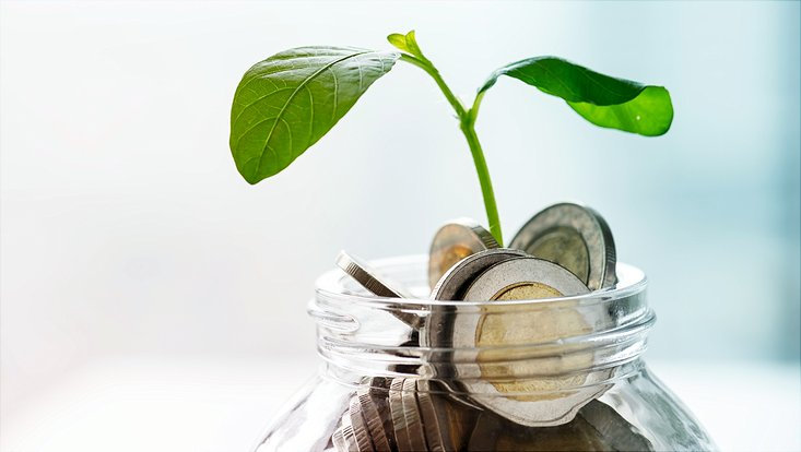 seedling-sprouting-from-coins