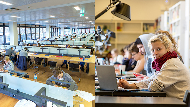 Studierende, die in der Bibliothek lernen / Students studying in the library