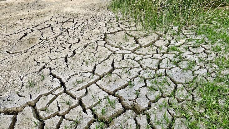 dry-soil