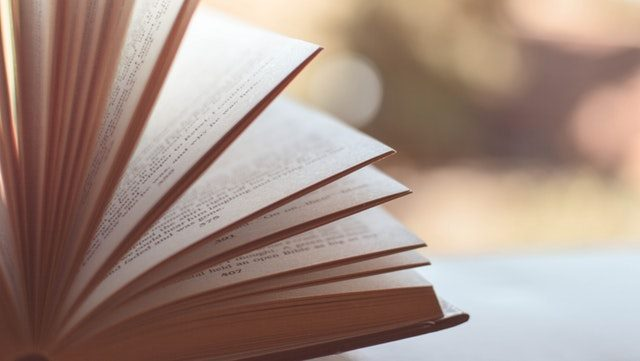 Halbgeöffnetes Buch/Half open book