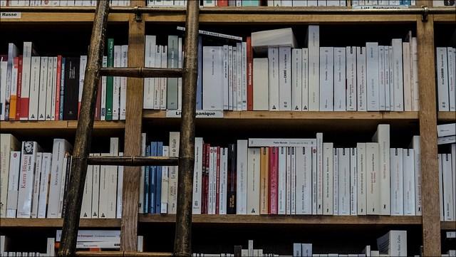 Ein altes Holzbücherregal voller Bücher mit angelehnter Leiter