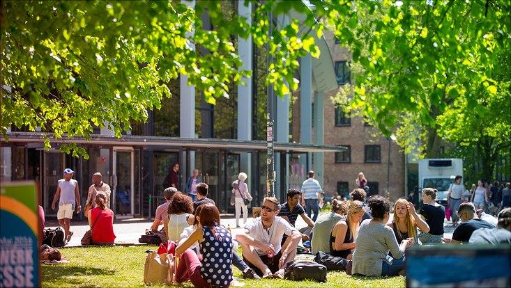 Studierende sitzen in der Sonne auf dem Campus
