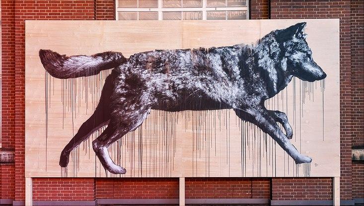 Graffito eines Wolfes von Jussi TwoSeven