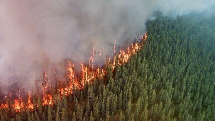 Brände in Alaska
