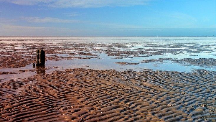 Nordseewatt bei Ebbe
