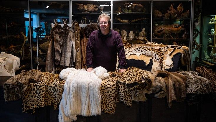 illegales Tierprodukt aus der Sammlung der Universität Hamburg