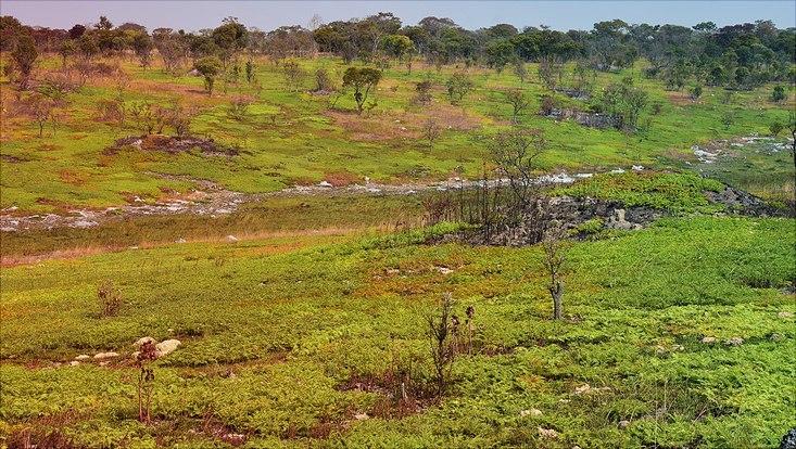 Tal mit Grasbewuchs in Angola