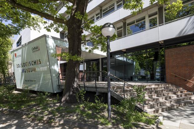 Außenaufnahme des Hamburger Centrums für Naturkunde