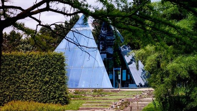Aufnahme aus dem Botanischen Garten der Universität