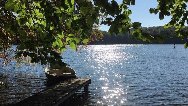 Der Plußsee im Kreis Plön